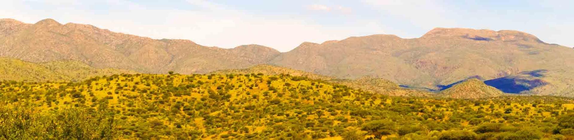 Gocheganas Reserve